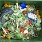 gaspillage-alimentaire-nourriture-poubelle